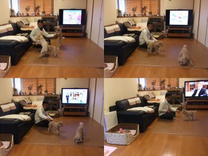2011_0215_174151-BLOG3036_convert_20110215190724.jpg