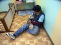 2009-12-1hoikuen6.jpg
