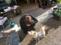 2010-1-5hoikuen9.jpg