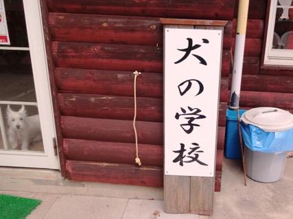 心愛&陽菜