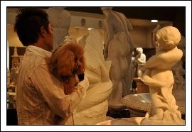大理石とフラちゃん