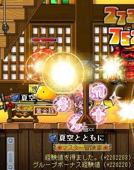 Maple091127_220411.jpg