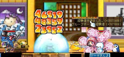 Maple091129_144545.jpg