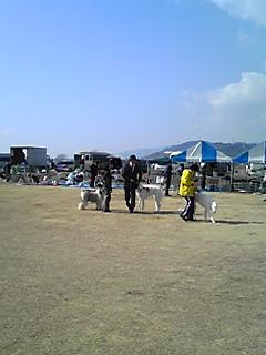 moblog_db75e6e0.jpg