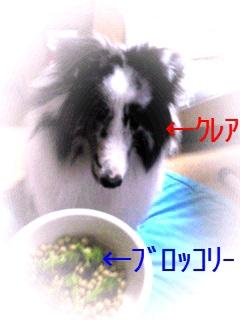 moblog_df977494.jpg