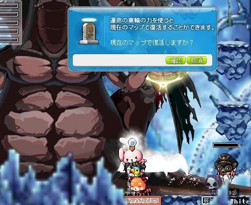 Maple110506_122413.jpg