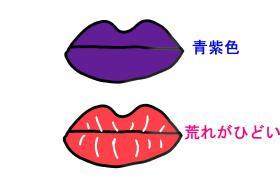 唇の症状 1