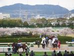 桜花賞2010・3