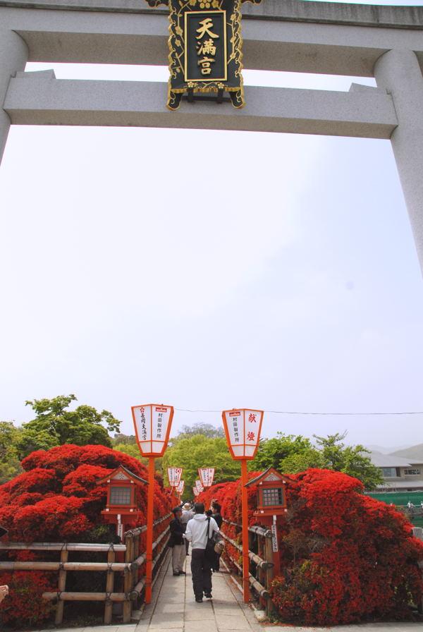 DSCnagaoka01.jpg
