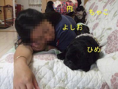 s-2011_05110048.jpg