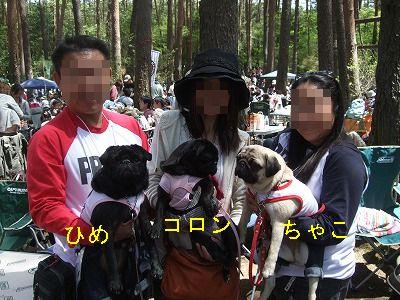 s-2011_05160223.jpg