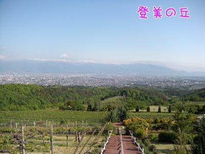 DSCN2746.jpg