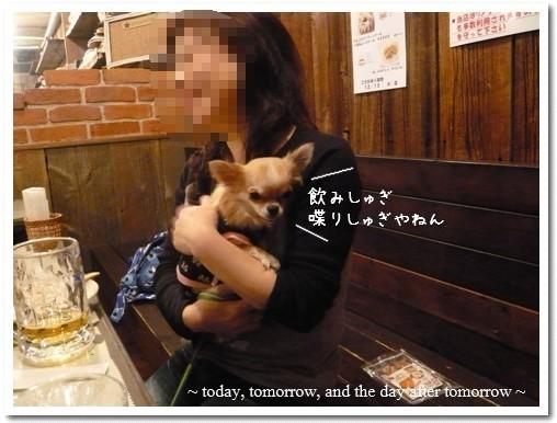 2009-12-01-07.jpg