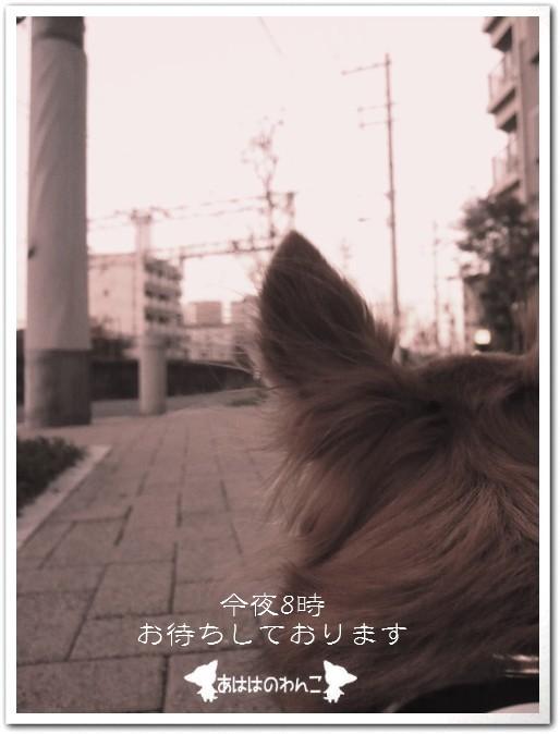 2009-12-04-06.jpg