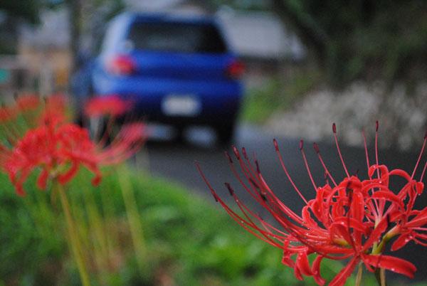 my-car.jpg
