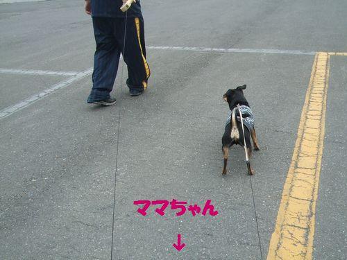 8_20110522211324.jpg