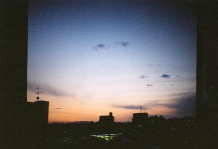 daiana1.jpg