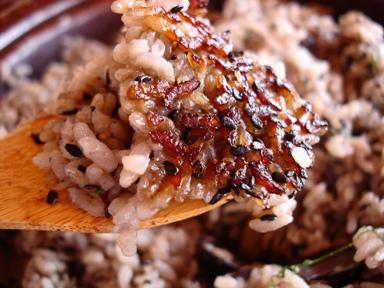 琵琶湖の黒飯 ブログ用