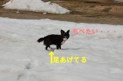 100415_12
