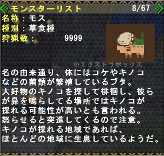 2010y12m26d_004345750.jpg