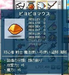 2011_0101_13.jpg