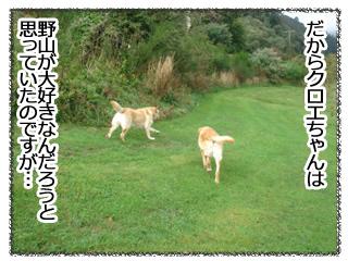 羊の国のラブラドール絵日記 3