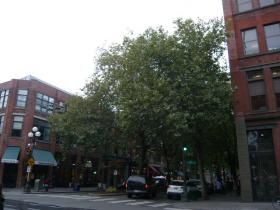 シアトルの街観光7