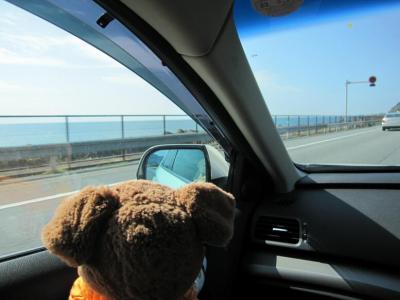 東名から海が見えたよ