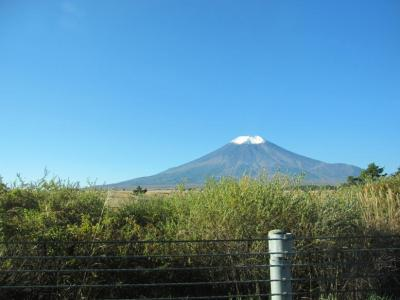 富士五湖道路から見た富士山