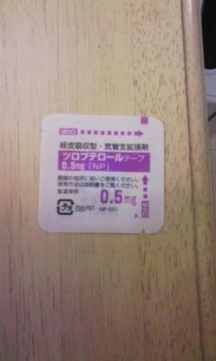 DVC00033_20101122233408.jpg