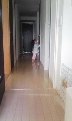 DVC00369_20101019140706.jpg