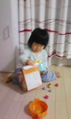 DVC00385_20101026220835.jpg