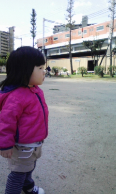 DVC00389_20101027140632.jpg