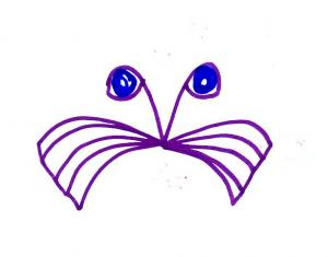 purplecat.jpg