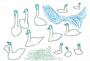 swan-pc.jpg