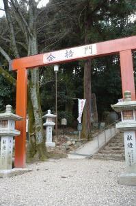 1001桜井01a