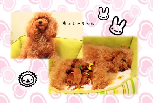 2010.3.20 みらんべびー4