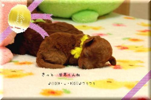 2010.3.20 みらんべびー13