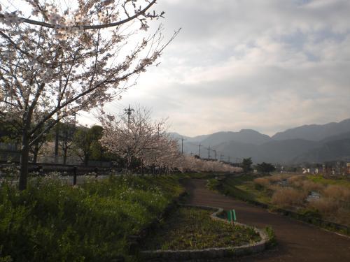 2010-04-13-01.jpg