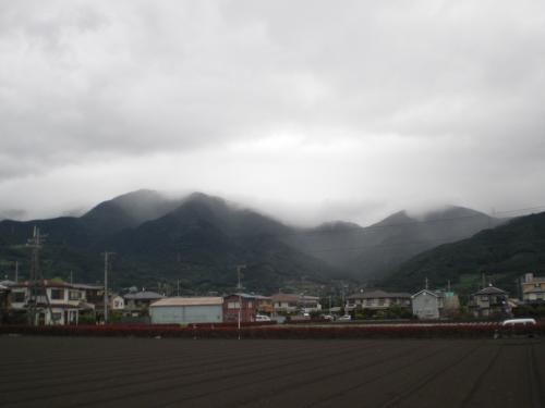 2010-06-14-01.jpg