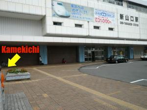 shinyamaguchi1.jpg
