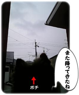 100310-2.jpg