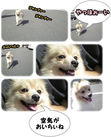 100326-4.jpg
