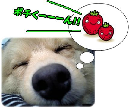 100511-3.jpg