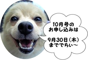 100911.jpg