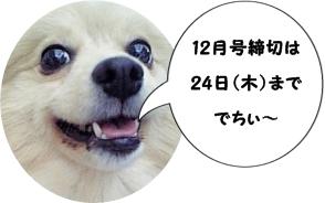 101114-6.jpg