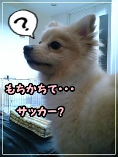 asobouyo3.jpg