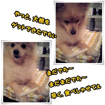daikonngeto1.jpg