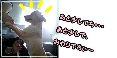 ohuro3.jpg