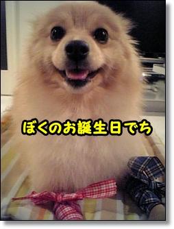 tanjoubi1.jpg